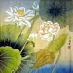 shenmei_lotus_lg