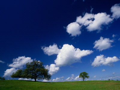 nicholas-pavloff-oak-trees-and-clouds-in-spring-foothills-of-sierra-nevada-usa